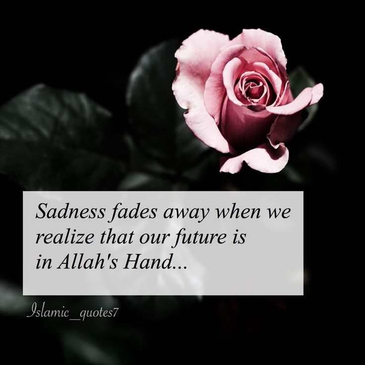 Quotes Deep Islamic: 2030 Best Loving Islam Images On Pinterest