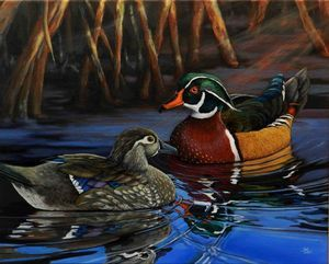 N.C. Wildlife Art Society Exhibits at Campbell House - The Pilot Newspaper: Features