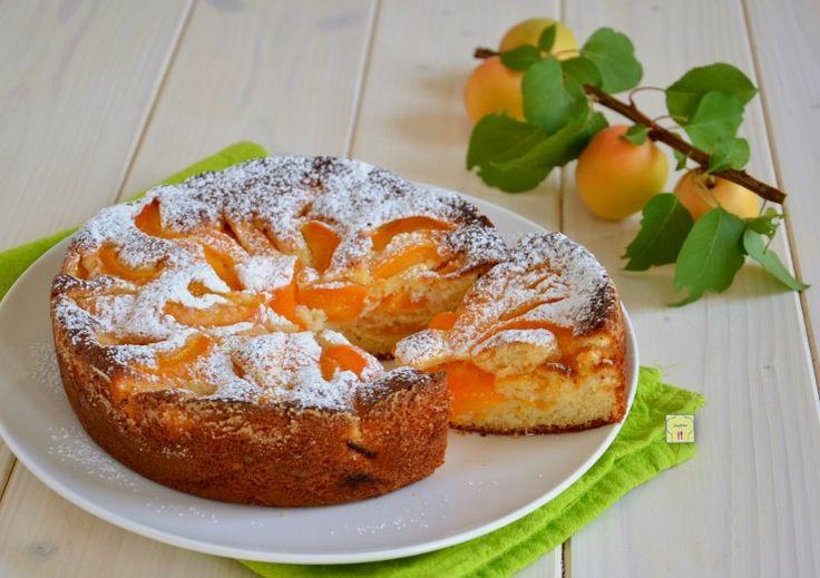 La torta albicocche e yogurt è una torta soffice e deliziosa perfetta per la colazione o la merenda di grandi e piccini, facilissima da fare.