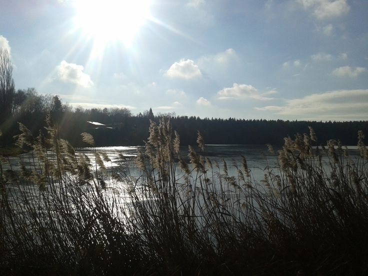 Kastelsky pond, Pilsen Region, Czech Republic