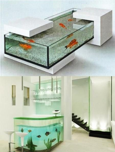 interior design with glass fish tanks