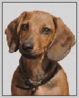 Free Dachshund Cross Stitch Pattern