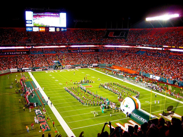 All about the U  University of Miami
