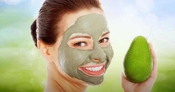 Manfaat alpukat bukan hanya digunakan untuk kesehatan, Manfaat Daun Alpukat Untuk Kecantikan seperti. • Masker rambut, • Masker wajah, • Menghaluskan Kulit,