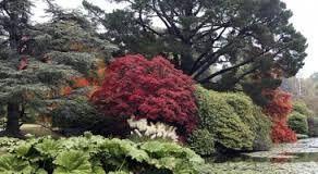 """Résultat de recherche d'images pour """"les plus beaux jardins anglais"""""""