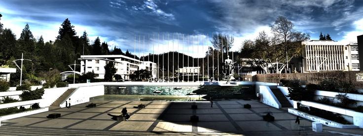Foro de la Universidad de Concepción. Foto de Leonardo Suarez Roa.