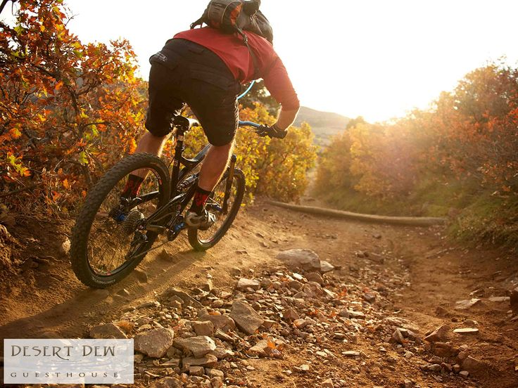 """Our un-interupted terraine is """"heaven"""" for mountainbikers; as we have a very nice single track with a rating of 9/10 by Cape Epic ABSA Cape Epic 2016 Cyclists. Link: http://ow.ly/R50a307WlP9"""