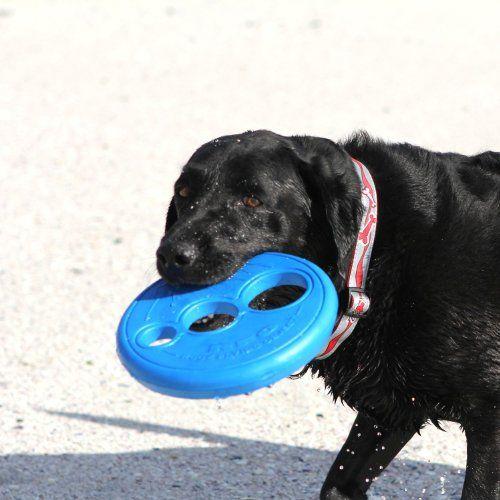 Wolters Rogz Beltz RFO Frisbee Hundespielzeug Wurfspielzeug Hunde Spielzeug - blau SavannaPet http://www.amazon.de/dp/B00FE3RQV4/ref=cm_sw_r_pi_dp_PUZexb0870M0V