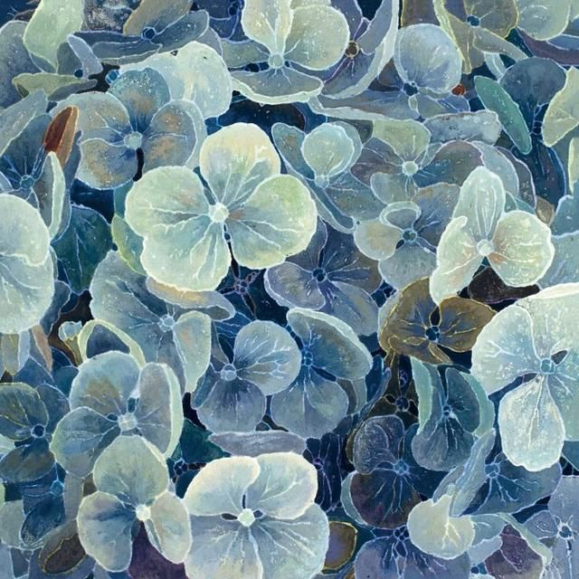 Blue Hydrangea (Detail) - Cressida Campbell.