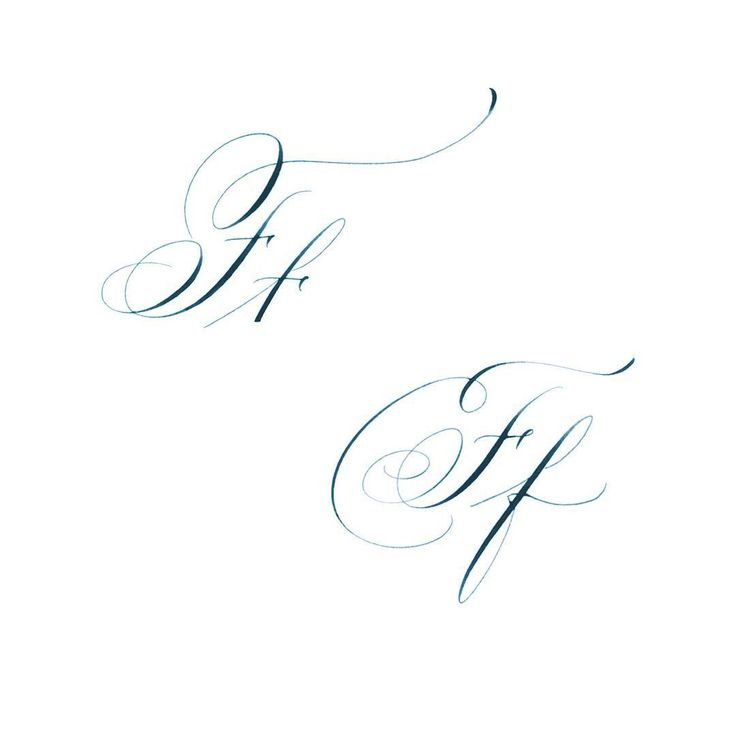 Best calligraphy the letter f images on pinterest