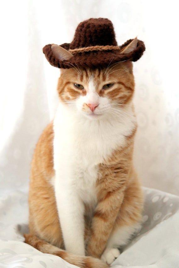 Cowboy Hat For Cats Bandana Add On Option Cowboy Halloween Etsy In 2021 Cat Bandana Hat For Cat Cat Halloween Costume