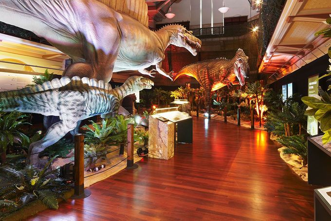 Dinosaur Discovery: Lost Creatures of the Cretaceous Queensland Museum