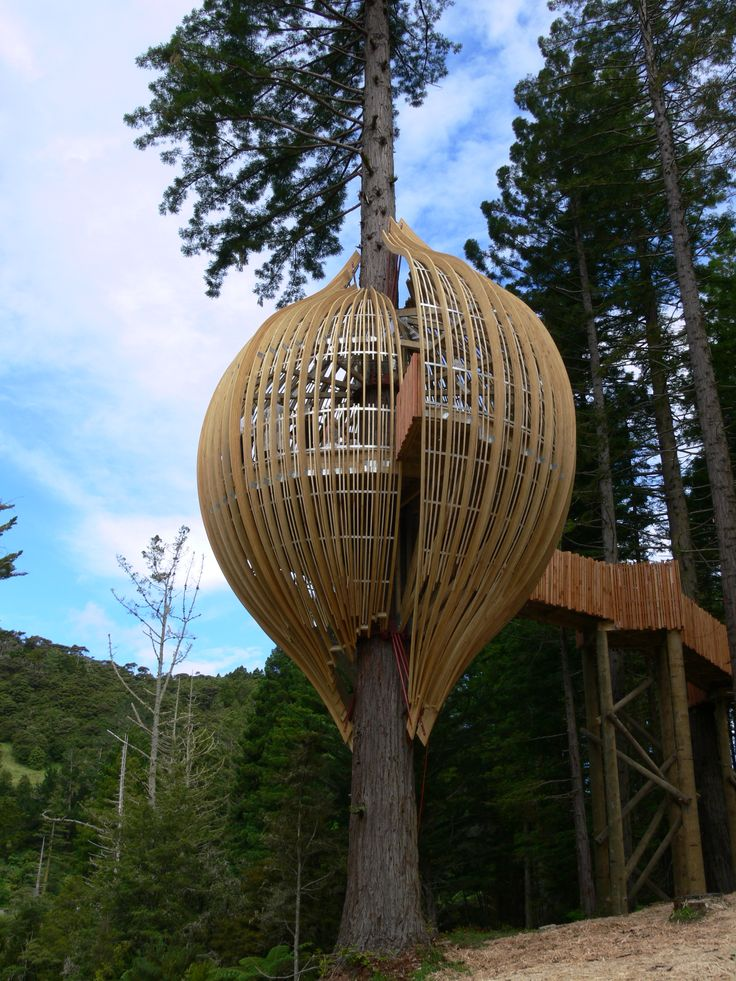 Tree House, Curved Glulam Structure