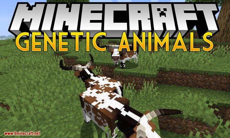 10+ All animals in minecraft ideas in 2021