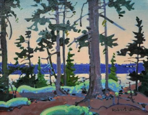 http://assiniboia.com/home.asp Robert  Genn Forest Interior at Kiusta, Langara, Queen Charlotte Islands