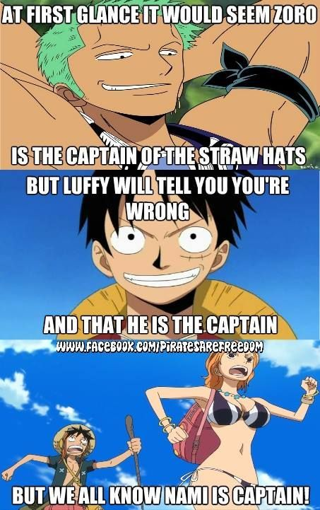 Luffy for the captain! WOOOOH! Then Nami is the vice ...