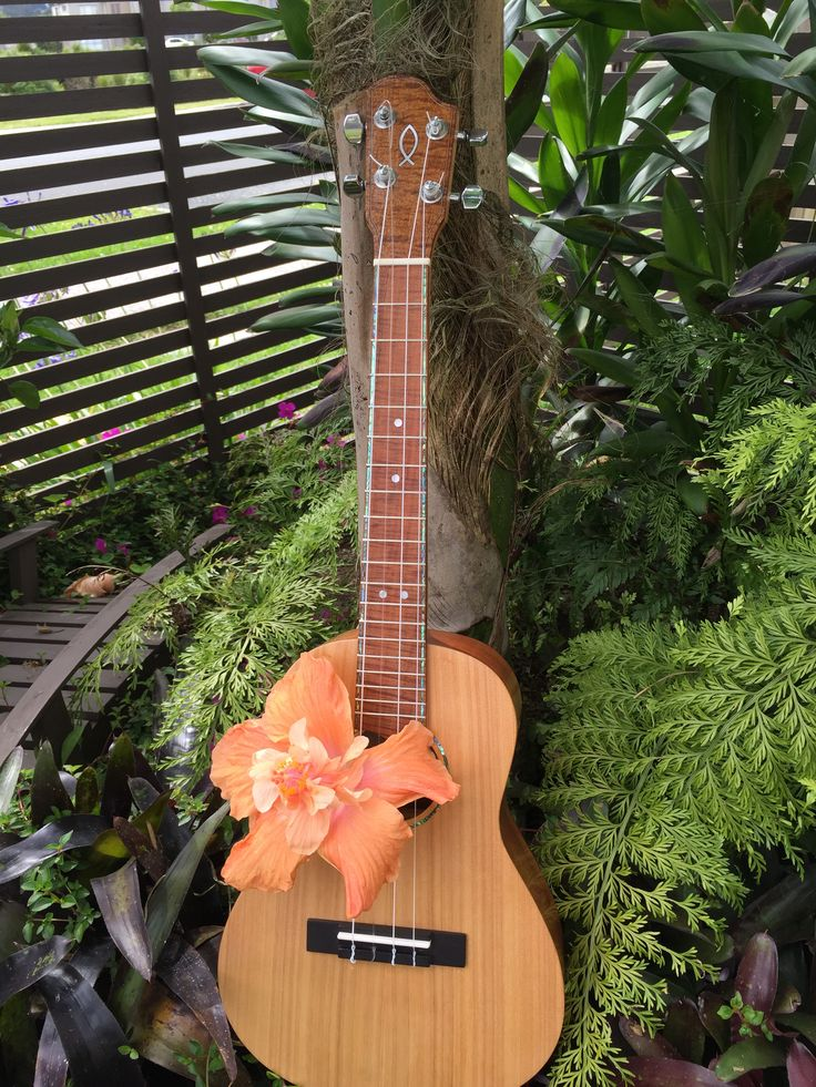 Made with NZ Macrocarpa top and neck, mahogany sides and back, and Australian Blackwood head plate and fretboard.