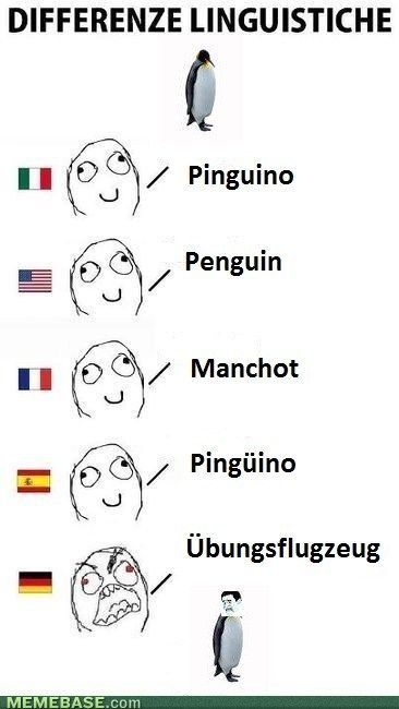 Are you kidding me? :,) übungsflugzeug??!!!? Practice airplane?? NOOO. It is pinguin. Just saying...