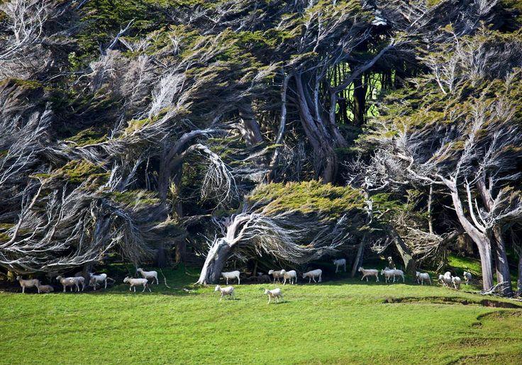 #fuzereps #travelphotography #travel #travelphotographer #nature #explore