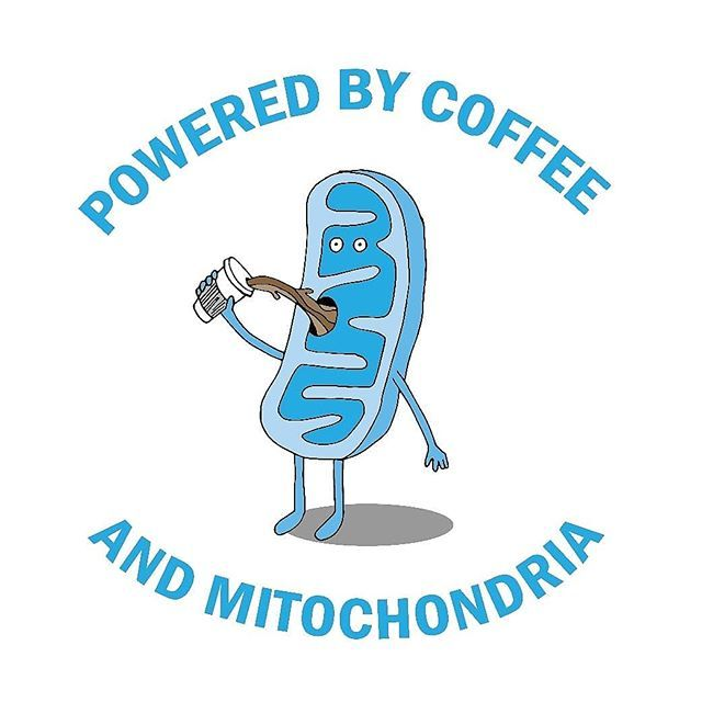 a614d76ac Powered by Coffee & Mitochondria! I need my energy. Funny cell biology  design