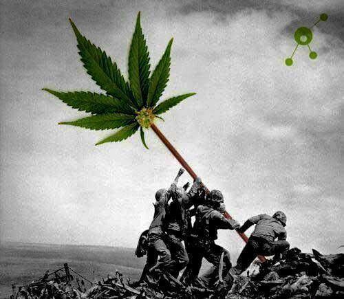 Cultiva tus derechos