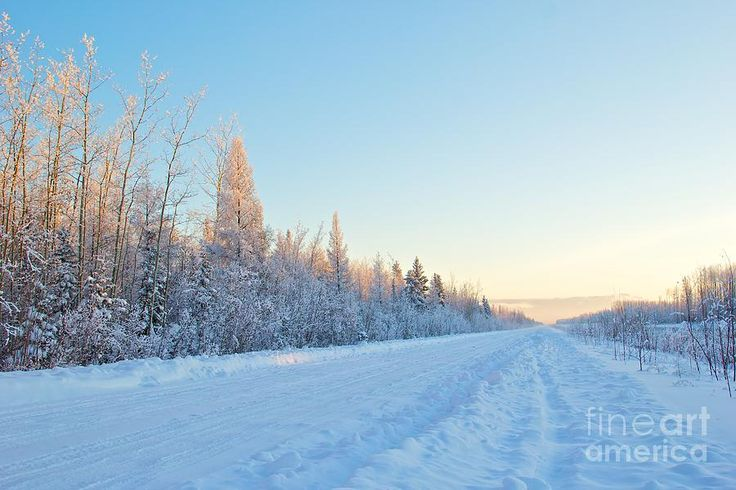 The Long Winter Road Photograph  - The Long Winter Road Fine Art Print