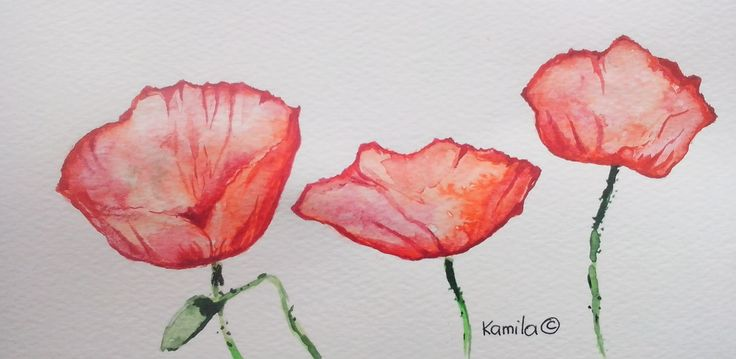 Poppy by Kamila Guzal-Pośrednik