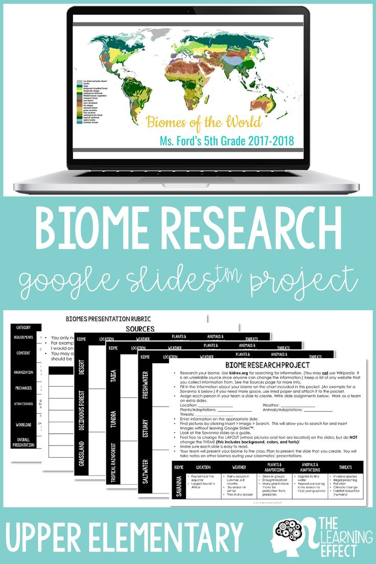 Biome Research Google Slides™ Project and Presentation