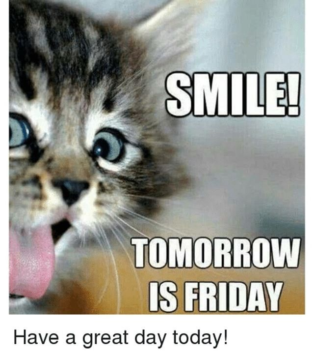 Happy Friday Eve Have A Great Day Tomorrow Is Friday Friday Cat Friday Inspirational Quotes
