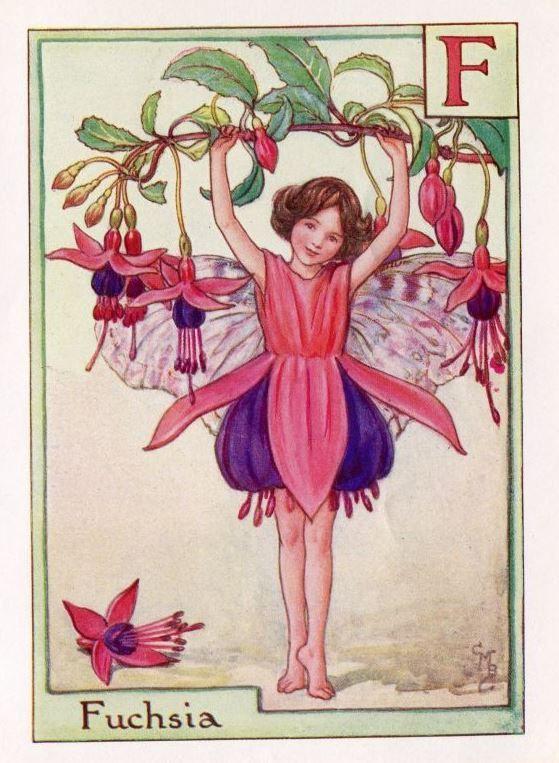 Fuchsia Alphabet Letter F Flower Fairy Vintage Print, c.1940 Cicely Mary Barker Book Plate Illustration