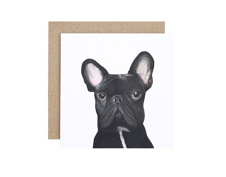 Gilbert the French Bulldog Greeting Card  Birthday, Get Well Soon or Congratulations?  For Me By Dee greeting cards are perfect for any animal lover, for any occasion!  Created and printed in Melbourne, Australia