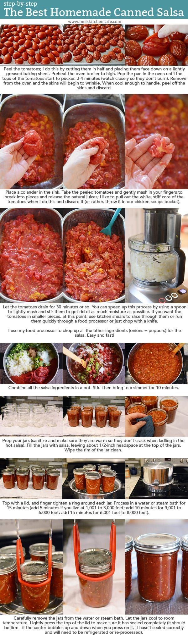 Kaylee's salsa recipe she used: The Best Homemade Salsa (Her changes: blanched the tomatoes, used on the vine instead of Roma, and she left out the cilantro)