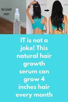 IT is not a joke! This natural hair growth serum can grow 4 inches hair every month Hair-serums purchased from stores are undoubtedly chemical laden cosmetics and also expensive. Today I am telling you about this herbal serum, which is getting very popular among ladies. Use of this serum will make your hair lengthy and strong. Here's what you'll need: 2 teabags – Chamomile tea 1/2 tbs – Dry Rosemary leaves 5 …