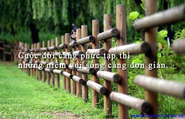 Cuộc đời càng phức tạp thì những niềm vui sống càng đơn giản.  Read more: http://danhngoncuocsong.vn/danh-ngon/cuoc-doi-cang-phuc-tap-thi-nhung-niem-vui-song-cang-don-gian.html#ixzz3JHk2McCd