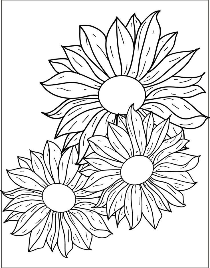 41 best coloriage fleurs et plantes flowers and plant - Coloriage fleurs et plantes a imprimer ...