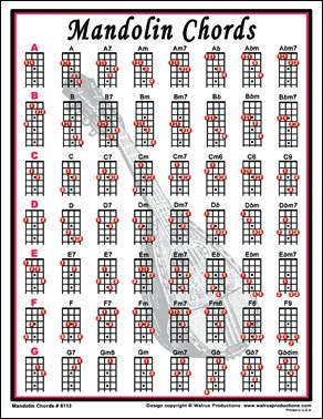 Easy Mandolin Chords | Mandolin Chords notebook size laminated chart for mandolin players.