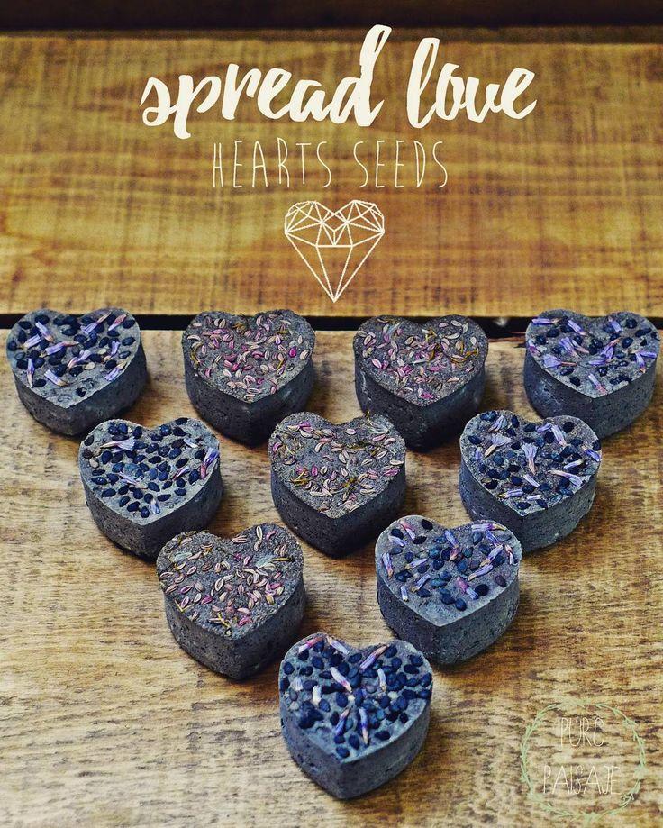 #valentineday #happyvalentinesday #spreadlove #seeds #heartseeker #heartseed #puropaisaje #nendodango #masanobufukuoka