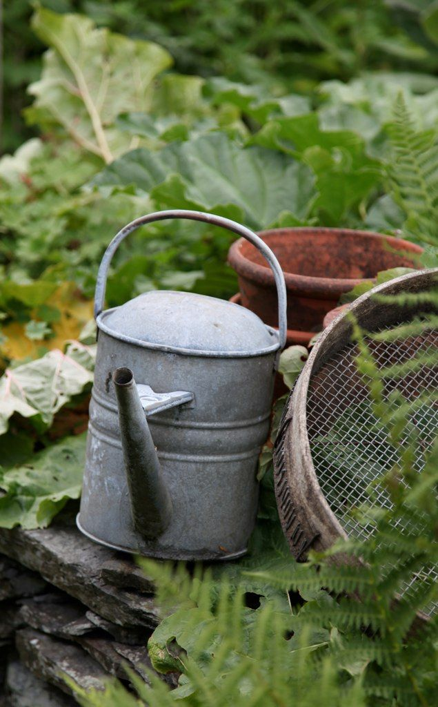 168 best primitive grain sifters images on pinterest for Vegetable garden tools