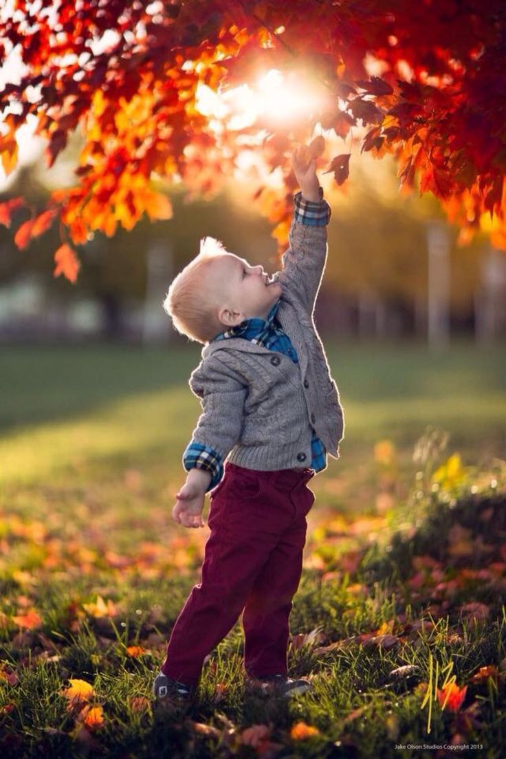 Autumn ~ kid's delight                                                                                                                                                                                 Mehr