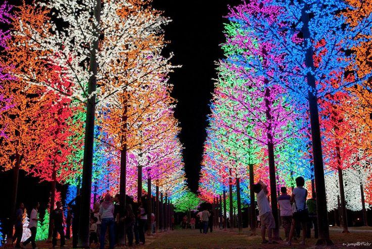 """Selangor, na Malásia - A mais desenvolvida e povoada dos 13 estados da Malásia, Selangor (ou Darul Ehsan , """"Morada da Sinceridade"""") abriga o Zoológico Nacional da Malásia, com 4 mil bichos. As árvores são uma grande atração turística na I- City (Shah Alam), cobertas de luzes vibrantes de LED, acesas 365 dias por ano."""