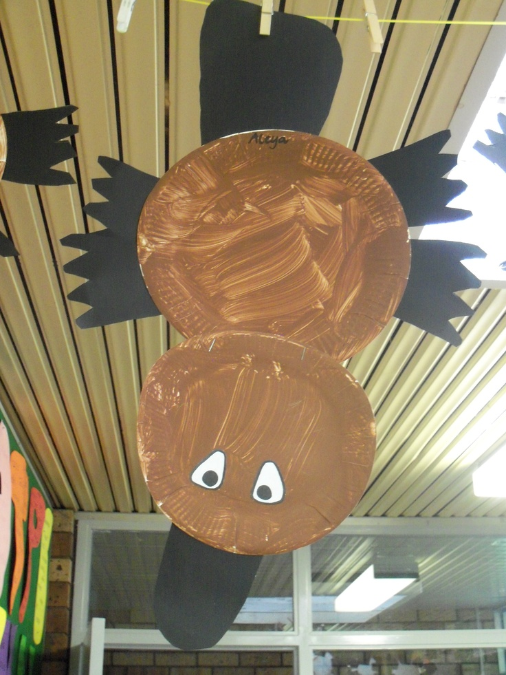 Paper Plate Platypus Australian Animal Craft Pinterest