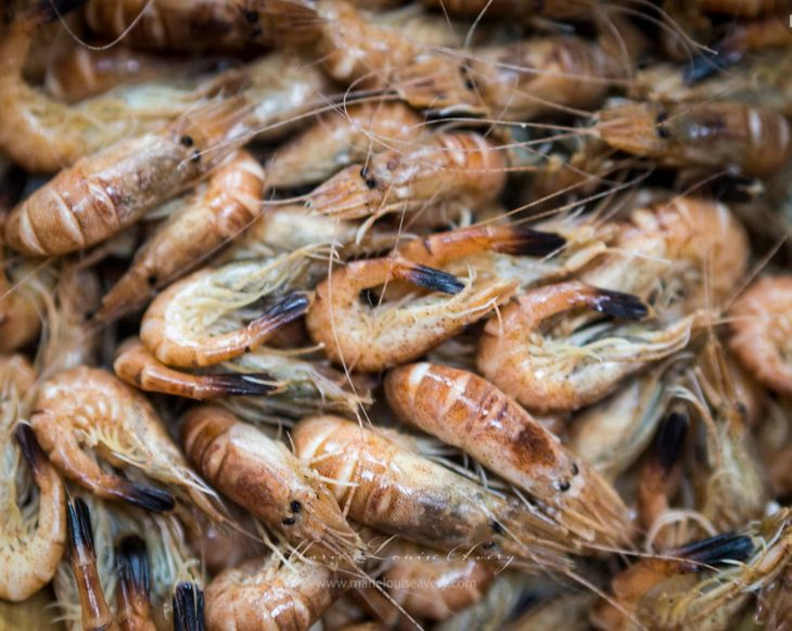 Fresh Brown Shrimps - just take the head & tail off - tasty