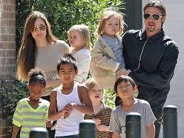 La familia Pitt-Jolie, es reconocida internacionalmente, ya que ambos padres son actores. Tres de los hijos son biológicos, mientras que los otros tres fueron adoptados.  La familia Pitt-Jolie, se caracteriza por ser nuclear ya que es familia numerosa y en la que conviven padres e hijos.  También se puede definir como familia moderna, dado que a pesar de tener seis hijos, los roles y funciones son flexibles y existe igualdad entre sexos, además ambos trabajan (familia de doble carrera).