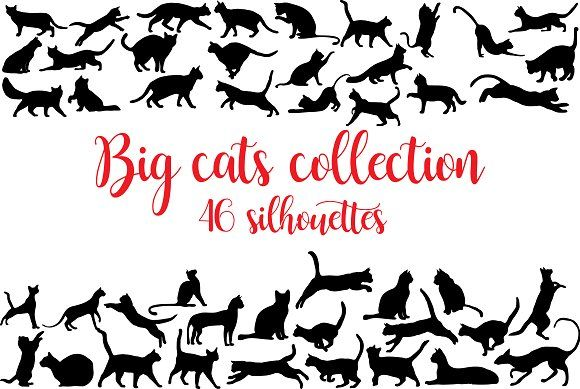 Cats collection of silhouettes by Orangepencil on @creativemarket