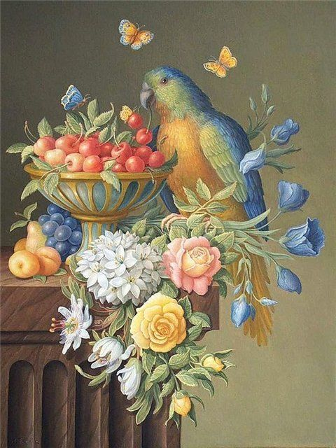 Экзотические птицы. Обсуждение на LiveInternet - Российский Сервис Онлайн-Дневников