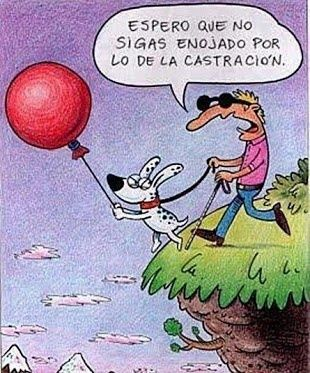 #CHISTES #RISA # http://www.gorditosenlucha.com/