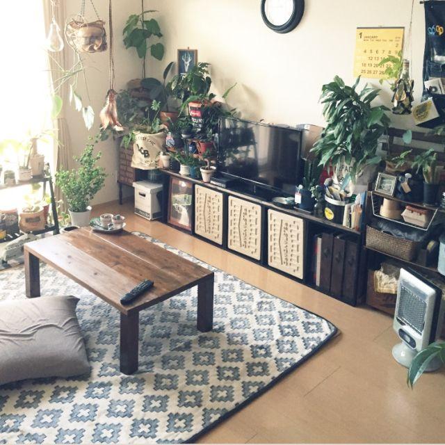 0611さんの、部屋全体,観葉植物,カラーボックス,テレビ台,一人暮らし,ストーブ,1K,モンステラ,しまむら,MERCURY,ベンジャミンバロック,niko and… ,ローテーブルDIY,のお部屋写真