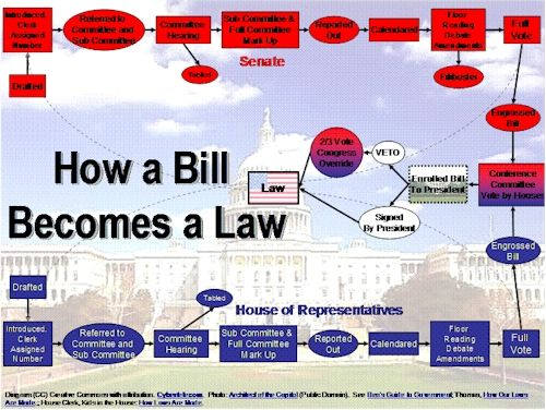 Don't forget the things you learned before you started law school - Schoolhouse Rock-How a Bill Becomes Law ...
