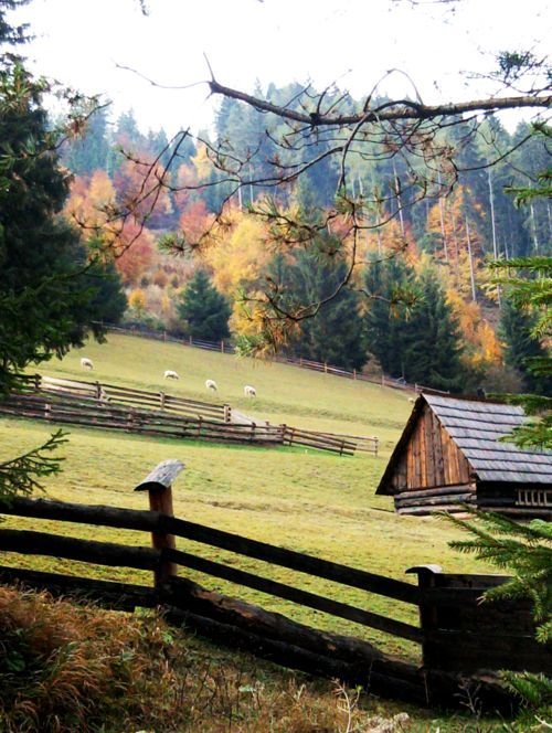 Homestead farmscapes pinterest homesteads barn and for Ranch and rural living
