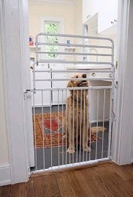 Tall Dog Gate